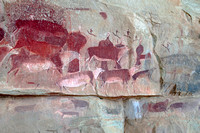 Detail of Bushmen art